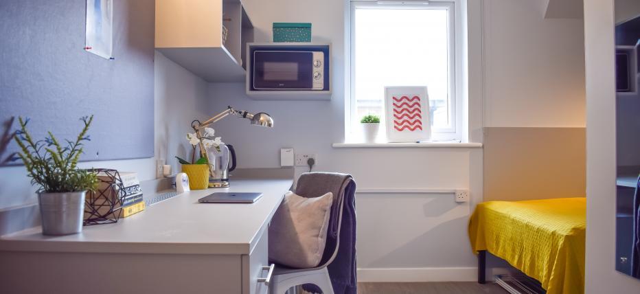 Platinum Mini Studio Plus Bedroom