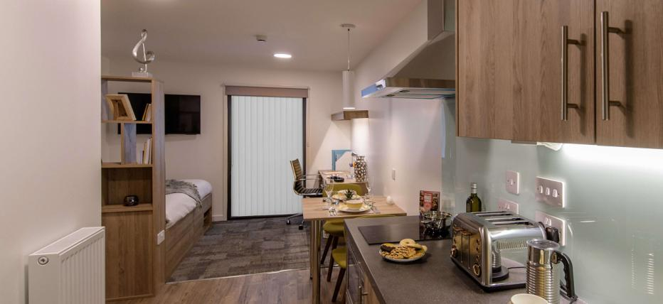 Room, kitchen, toaster, cupboards, extractor fan, hob, dining table, 2 green chairs, bed, window, desk, chair, shelves and wall mounted TV