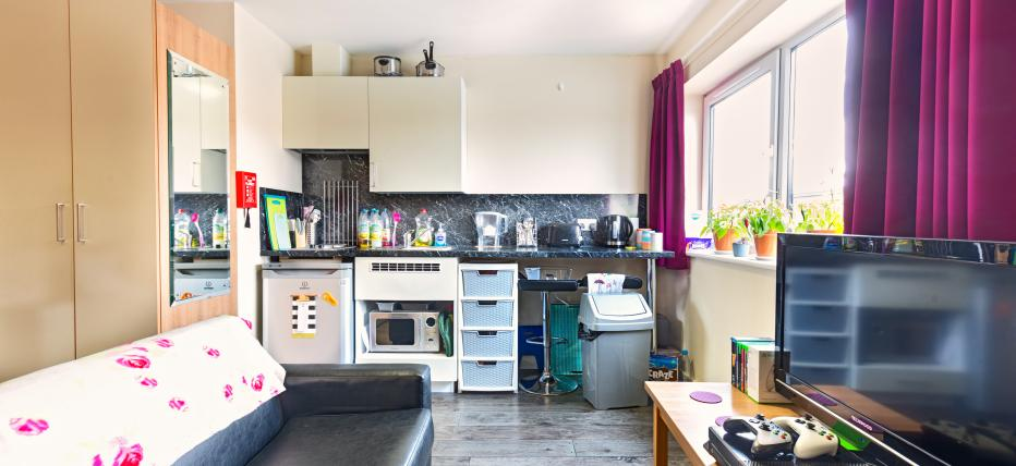 Studio, black sofa, TV on wooden coffee table, purple curtains, large window, kettle, toaster, sink, large wardrobe on the side, mirror on warderobekitchen, oven, hob, cupboards,