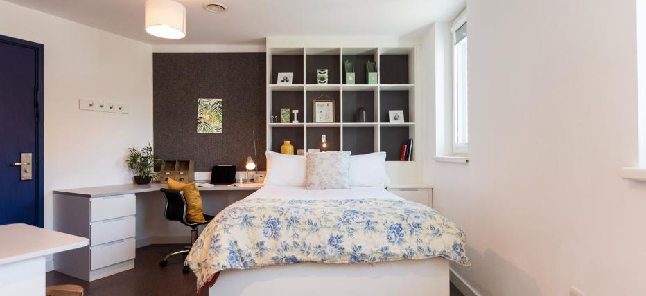 Studio, bed, side table, desk, drawers, chair, shelves, windows