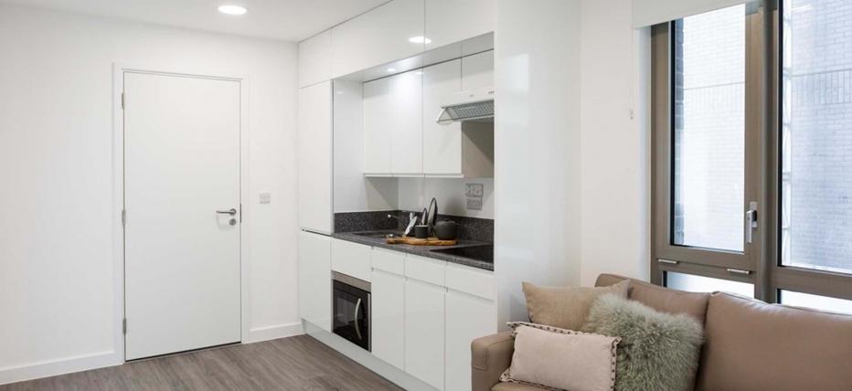 Kitchen area and sofa