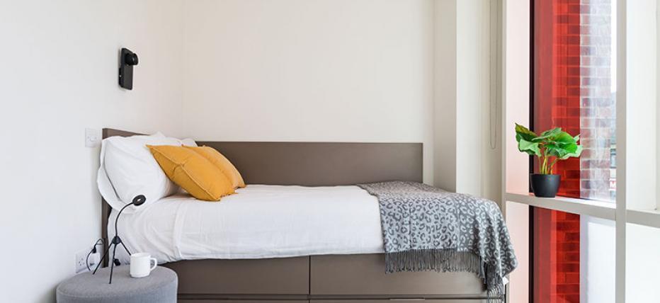 Platinum studio bed image