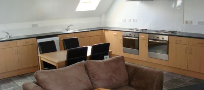 Shared kitchen, brown sofa, 2 hobs, 2 extractor fans, window, cupboards and sink