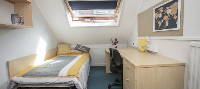 Loft room, single bed, desk, chair, noticeboard, shelves, overhead window, radiator