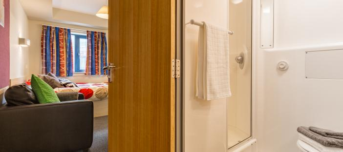 Classic Studio - Bed, sofa, door into bathroom
