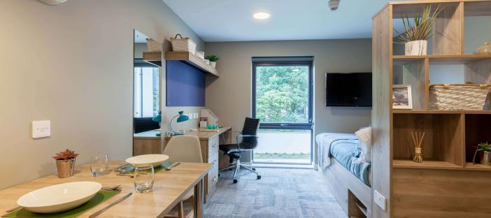 Room, studio, wooden dining table, one chair, shelves, cupboard, desk, chair, bed, wall mounted TV and window